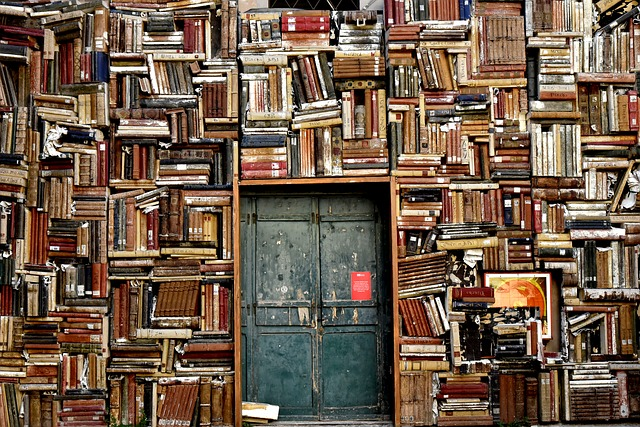 entrance to a room covered in books and metal doors